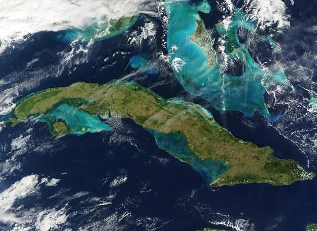 Wyobrażacie sobie, by zielona Kuba stała się lodową pustynią? /AFP