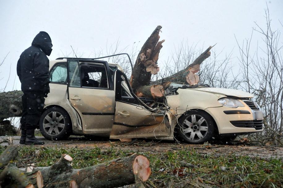 Wypadek na drodze nr 213 między miejscowościami Wicko i Poraj w Pomorskiem /Jan Dzban /PAP