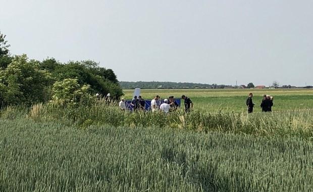 Wypadek szybowca pod Ostrowem Wielkopolskim. Zginął pilot