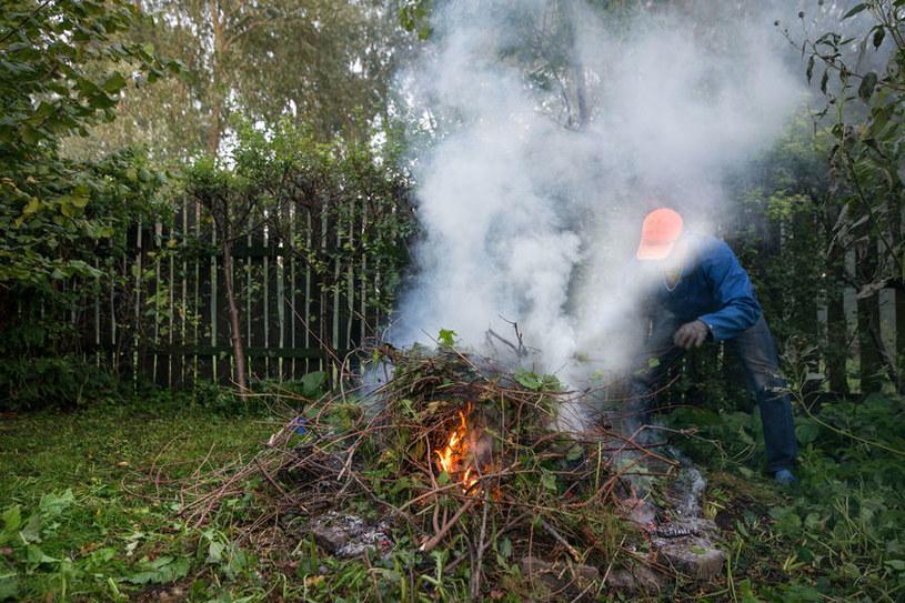 Wypalanie trawy /©123RF/PICSEL