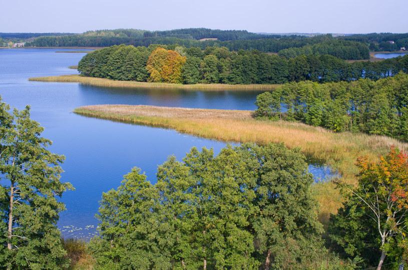 Wypocznij wśród pięknych lasów oraz skarbów przyrody /123RF/PICSEL