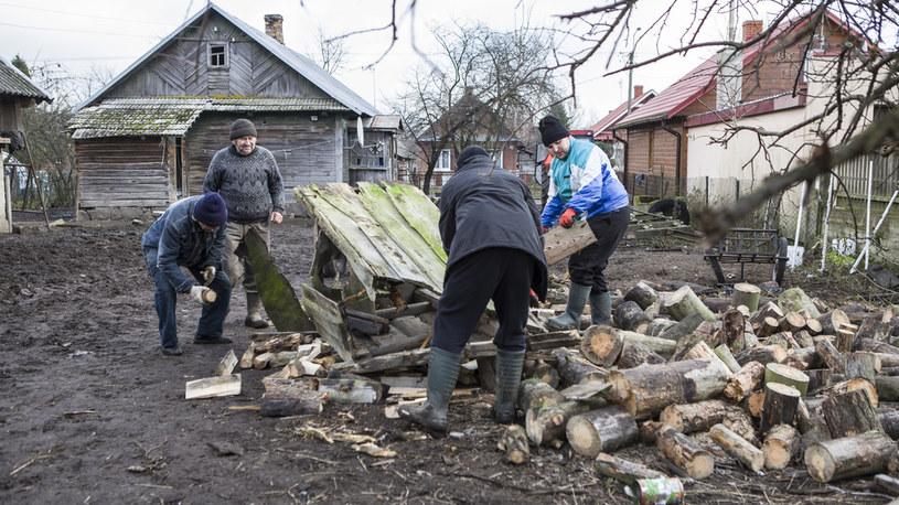 Wyprawa po drewno zamieniła się w prawdziwą przygodę! /FOKUS TV /materiały prasowe