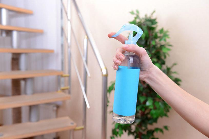 Wypróbuj naturalne sposoby na odświeżenie powietrza w domu /123RF/PICSEL