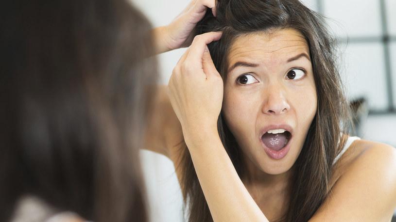 wyrywanie siwych włosów /© Photogenica