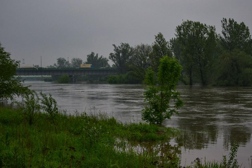 Wysoki poziom wody na Wiśle w Krakowie /Krzysztof Zębala /