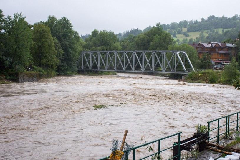 Wysoki poziom wody w Białym Dunajcu /Piotr Korczak /Reporter