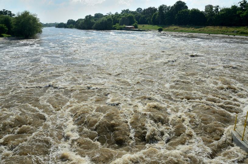Wysoki stan wody w Odrze, zdj. ilustracyjne /Bartlomiej Magierowski /East News