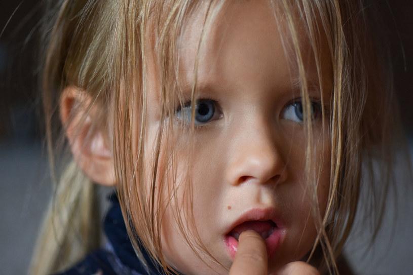 Wysoko wrażliwe dziecko lepiej funkcjonuje w grupie, którą zna /123RF/PICSEL
