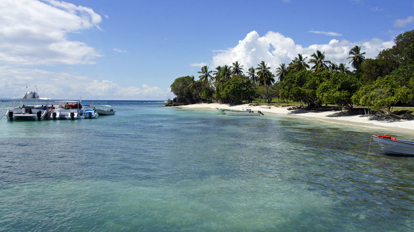 Wyspa Cayo Levantado /123RF/PICSEL
