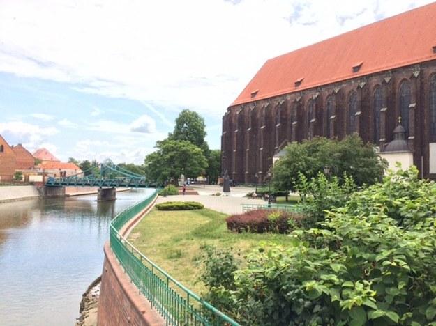 Wyspa Piasek to 5 hektarów ciszy i spokoju w samym centrum Wrocławia /Bartłomiej Paulus /RMF FM