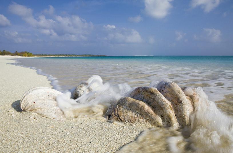 Wyspy Marshalla tylko pozornie są rajem /Reinhard Dirscherl/ullstein bild via Getty Images /Getty Images