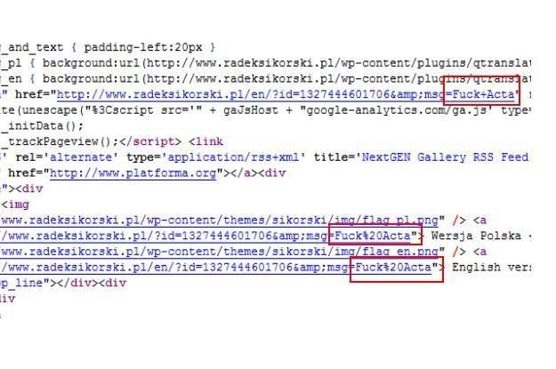 Wystarczy wejść na stronę radeksikorski.pl, sprawdzić źródło strony  (CTRL + U) i się przekonać /INTERIA.PL