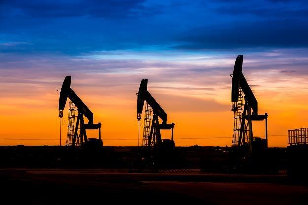 Wystarczył jeden sygnał i ropa mocno drożeje... /©123RF/PICSEL