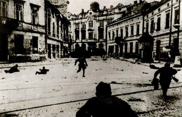 """Wystawa """"Burza we Lwowie"""" jest kolejną inicjatywą Muzeum AK, po wystawie """"Burza zaczęła się na Wołyniu"""", związaną z obchodami 70. rocznicy rozpoczęcia akcji """"Burza"""" /materiały prasowe"""