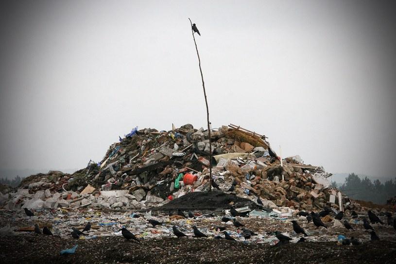 Wysypisko śmieci, zdjęcie ilustracyjne /Anatol Chomicz /FORUM