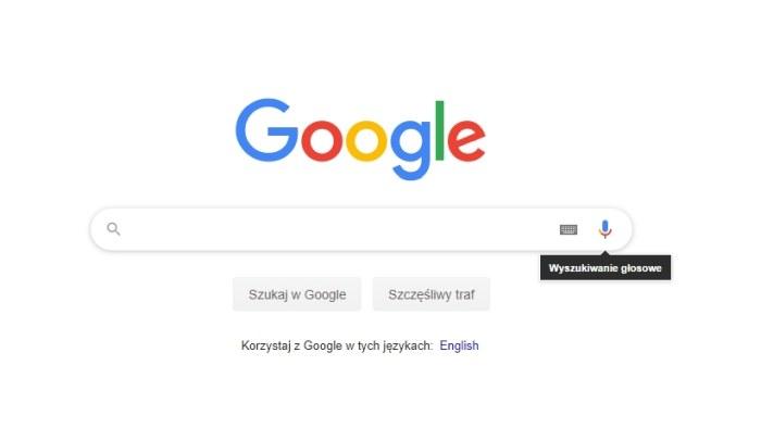 Wyszukiwarka Google /INTERIA.PL