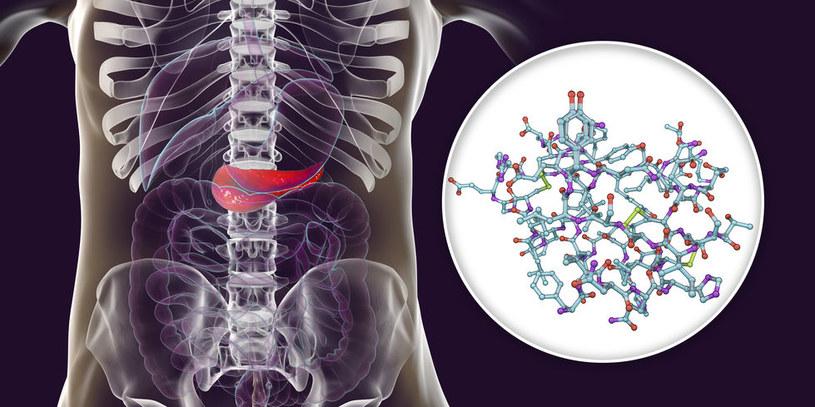 Wytwarzanie insuliny /©123RF/PICSEL