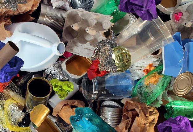 Wywóz niesegregowanych śmieci będzie droższy? /©123RF/PICSEL