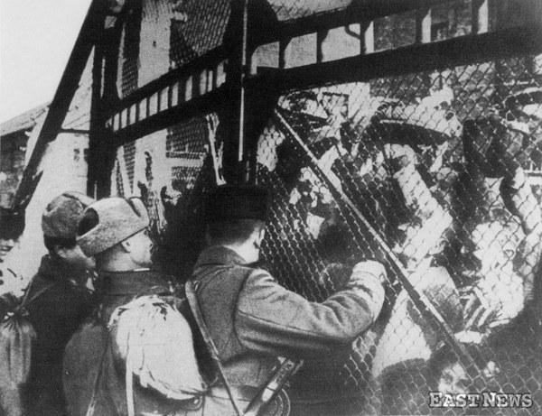 Wyzwolenie Auschwitz