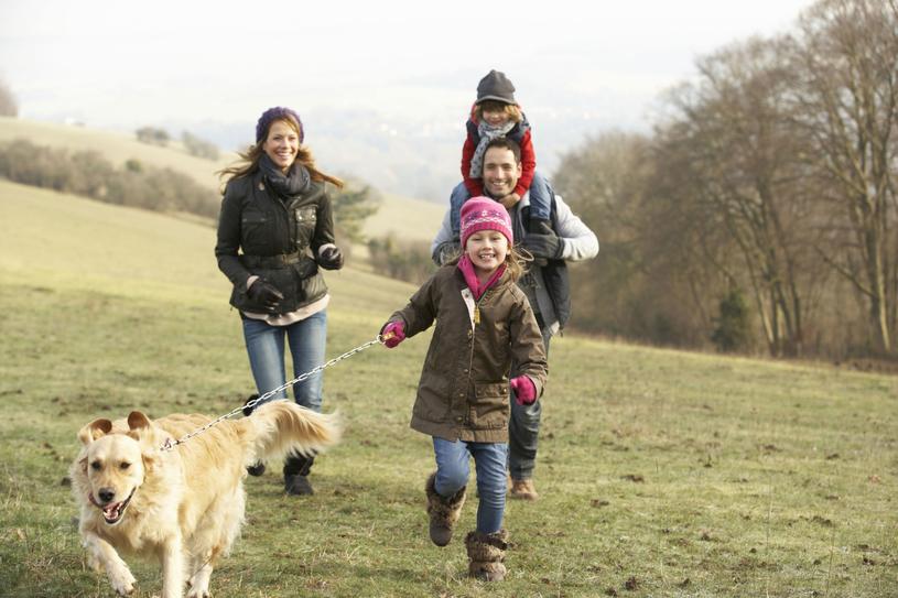 Wzajemna nienawiść niszczy rodzinę. Dla dobra dzieci warto zmienić podejście /Picsel /123RF/PICSEL