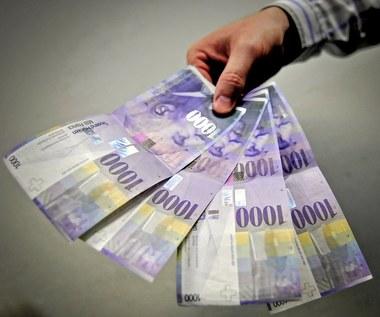 Wzrosło ryzyko prawne dotyczące kredytów walutowych, niska rentowność banków istotnym źródłem ryzyka