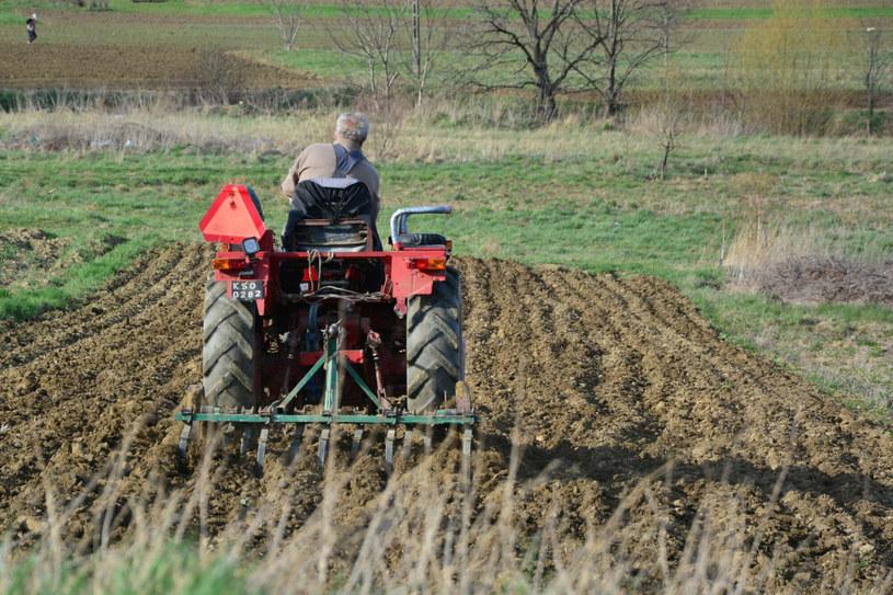 Wzrost cen coraz mocniej uderza w emerytów i rencistów - zwłaszcza rolników /Fot. Wojciech Zatwarnicki /Reporter