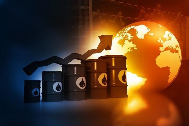Wzrost cen ropy przed spotkaniem OPEC /©123RF/PICSEL