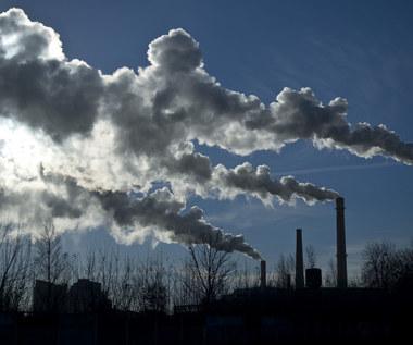 Wzrost emisji CO2 wyhamował