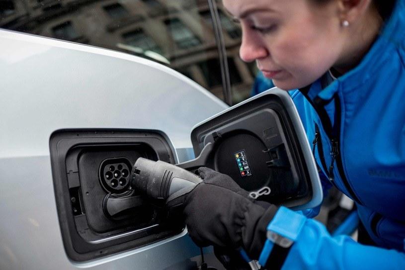 Wzrost sprzedaży samochodów elektrycznych /AFP