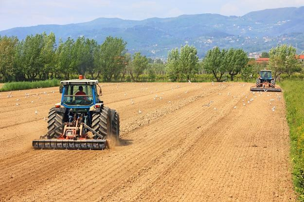 Wzrosty cen ziemi rolnej zwalniają w oczekiwaniu na restrykcyjne prawo /©123RF/PICSEL