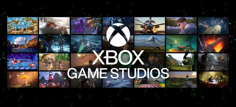 Xbox Game Studios /materiały prasowe