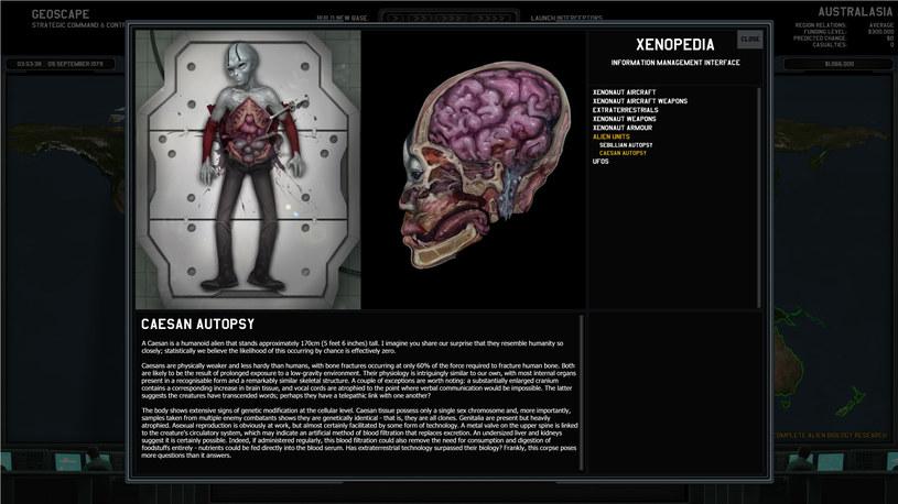 Xenonauts /materiały prasowe