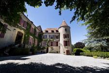 XIV-wieczny zamek wystawiony na sprzedaż