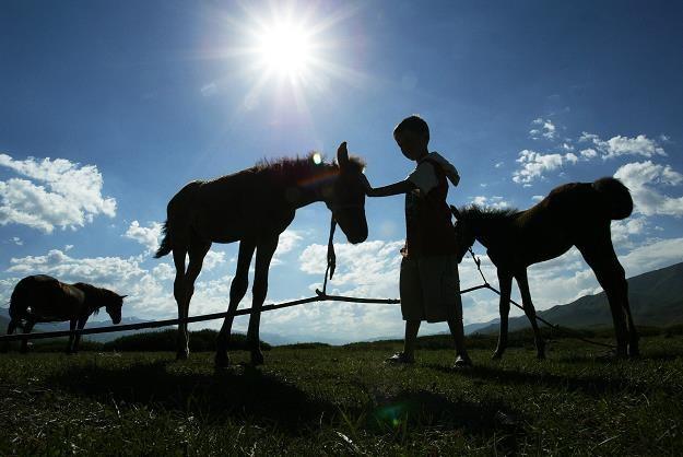 XIX-wieczne wspólnoty gruntowe zostaną przekształcone /AFP