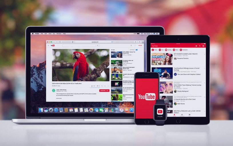 YouTube wprowadza nową funkcję /123RF/PICSEL