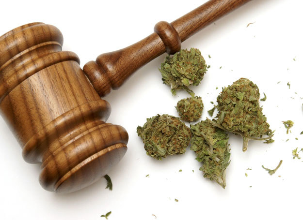Z badań wynika jednoznacznie, że ok. 6,8 mln Amerykanów jest trwale uzależnionych od marihuany/ Zdjęcie ilustracyjne /123RF/PICSEL