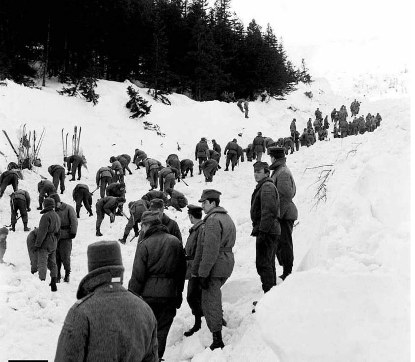 Zcałej grupy ocalało tylko pięć osób, które odskoczyły do lasu. Wśród drzew masy śniegu traciły swój zabójczy impet /Wikimedia Commons /materiały prasowe