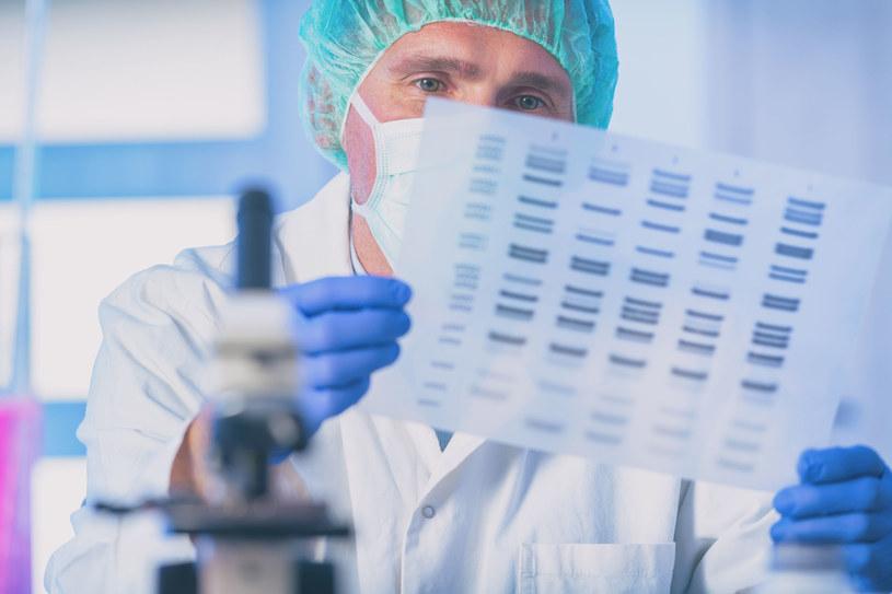 """Z genów można """"wyczytać"""" bardzo dużo informacji /123RF/PICSEL"""