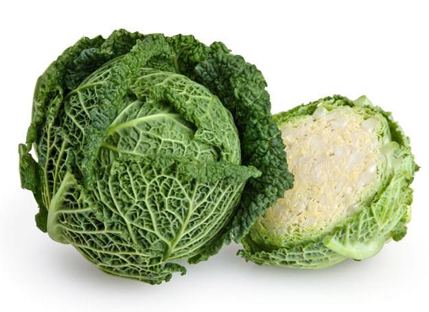Z kapusty włoskiej możemy przyrządzać wszystkie ulubione potrawy kapuściane - gołąbki, zasmażaną, bigosiki i kapuśniaki. /123RF/PICSEL