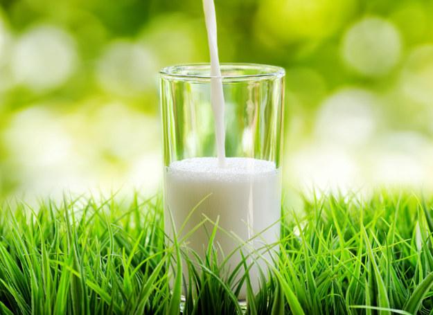 Z mleka koziego możesz przygotować kosmetyki /123RF/PICSEL