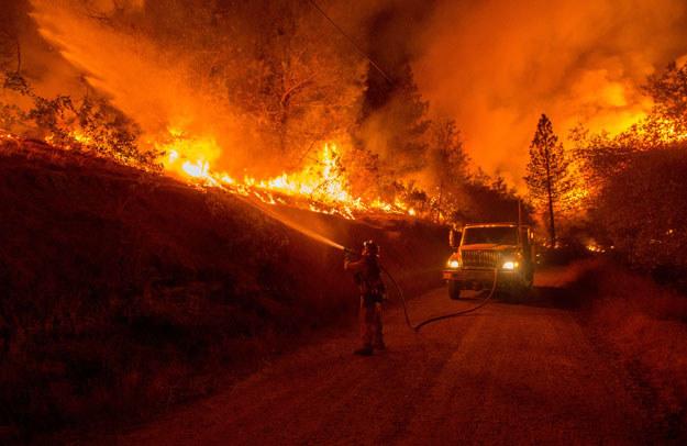 Z ogniem walczy około 250 strażaków /AFP
