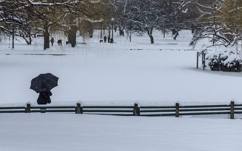 Z powodu śnieżycy zamknięto część szkół i urzędów /PAP/EPA