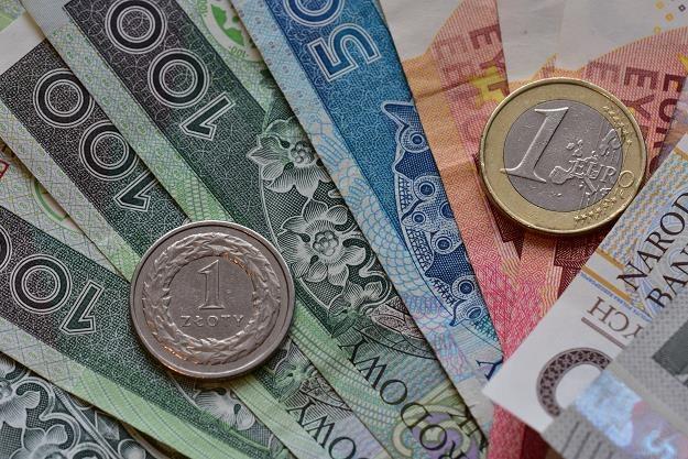 Z przyjęciem wspólnej waluty lepiej jeszcze poczekać /©123RF/PICSEL