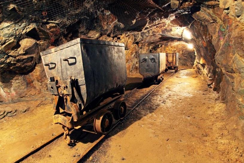Z punktu widzenia rządu najwygodniej byłoby odsunąć w czasie ostateczne decyzje w sprawie górnictwa na przyszły rok /123RF/PICSEL