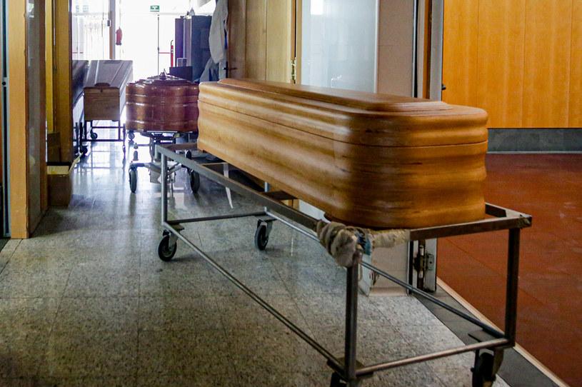 Z raportu wynika, że liczba zmarłych i zakażonych w Hiszpanii może być w rzeczywistości dużo wyższa /Ricardo Rubio/Europa Press /Getty Images