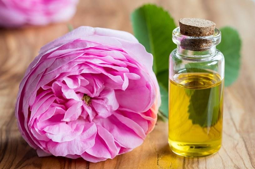 Z róży pozyskuje się olejek /123RF/PICSEL