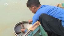 Z ton śmieci wyławia prawdziwe skarby