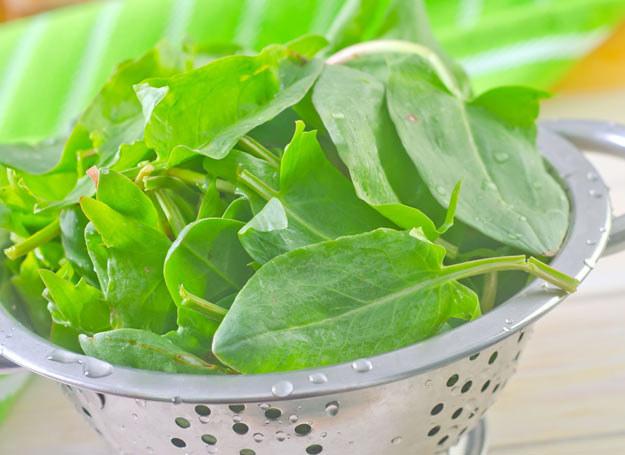 Z tych liści zrobisz piękne danie /csel /123RF/PICSEL