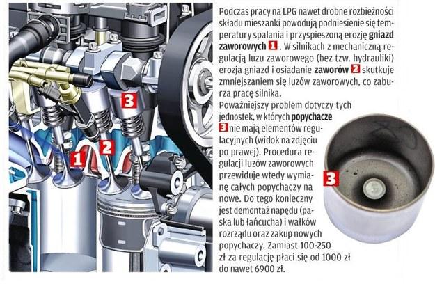 Z tym mogą być kłopoty przy zasilaniu LPG /Motor