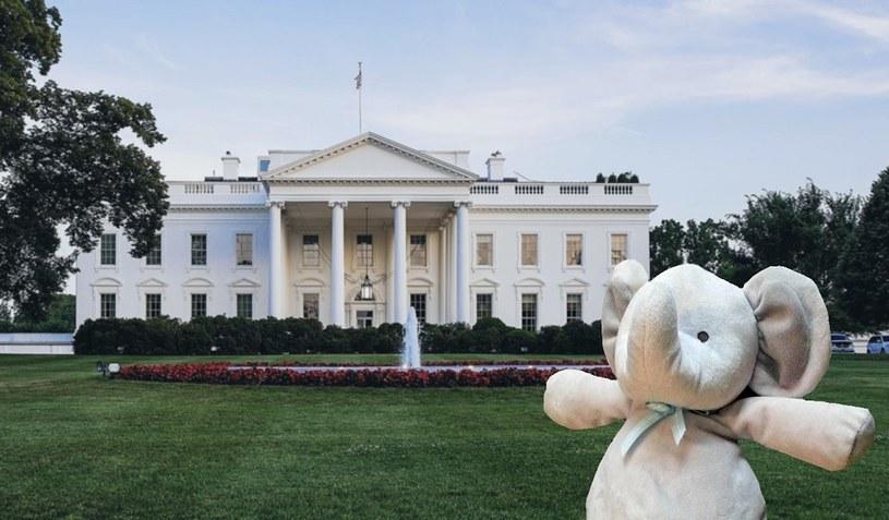 Z wizytą w Białym Domu /earlyamerican /imgur.com